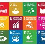 EU-Projekte im Bildungsbereich